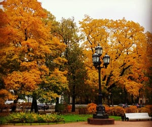 autumn, fall, and gardens image