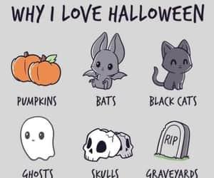 pumpkin, Halloween, and black cat image