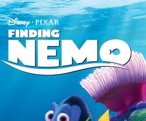 australia, nemo, and clownfish image