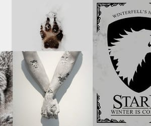 article, stark, and game of thrones image