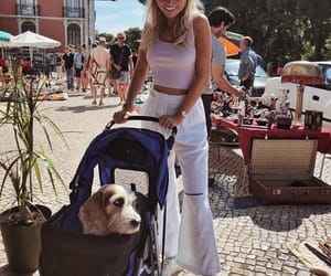 blonde, cool, and dog image