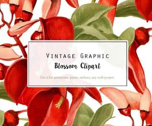 digital print, digital download, and clip art flower image