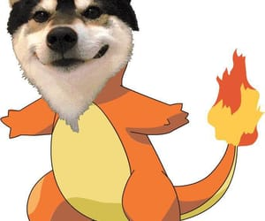 dog, fire, and pokemon image