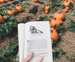 autumn, Halloween, and book image