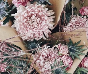 aesthetic, flower power, and peonies image
