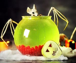 cocktail, Halloween, and halloweenparty image