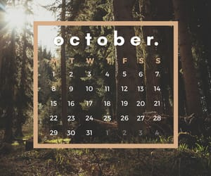 aesthetic, forest, and calendar image