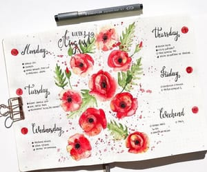 flowers, poppy, and bullet journal image