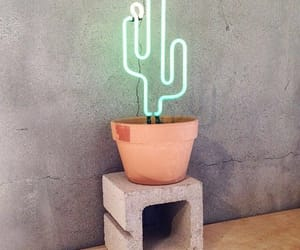 cactus, light, and neon image