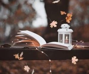article, reading, and autumn image