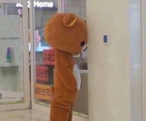 aesthetic, bear, and sad image