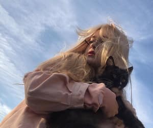 cat, everday, and grunge image