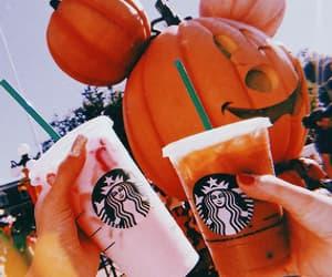 starbucks, autumn, and drink image
