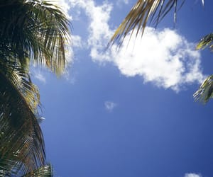 azul, clouds, and palms image