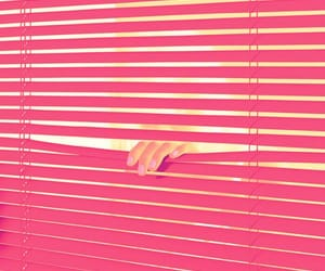 blind, blinds, and girl image