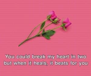 heart, heartbreak, and Lyrics image