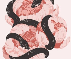 wallpaper, snake, and pink image