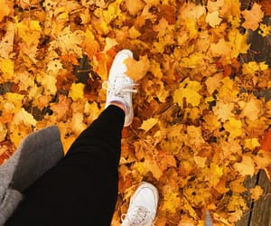 autumn, fall, and Fila image