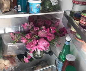 apartment, flowers, and fridge image