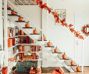 autumn, autumnal, and decor image