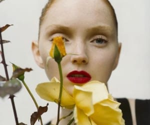 Lily Cole, model, and fashion image