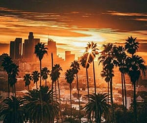 city, los angeles, and beautiful image