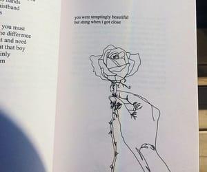 book, rose, and beautiful image