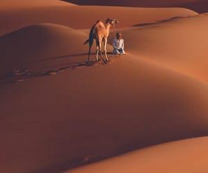 arab, arabic, and muslim image