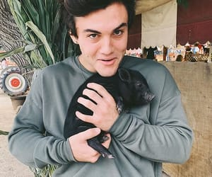 boys, ethan, and pig image