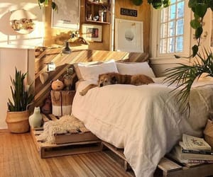 decor, bedroom, and plants image