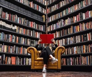 books, libros, and bibliotecas image