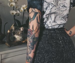 cat, girl, and Hot image