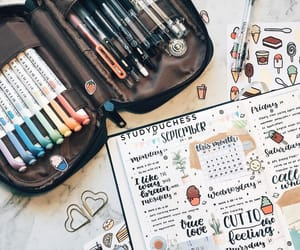 journaling, schedule, and zebra midliner image