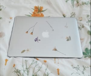 aesthetic, flowers, and apple image