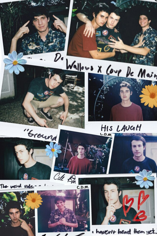 Wallows Wallpaper Done By Me Enjoy On We Heart It
