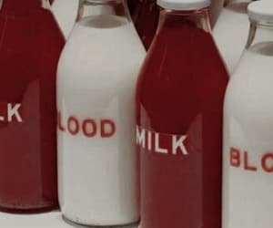 aesthetic, milk, and red image