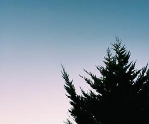 evening, horizon, and sky image