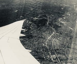 black and white, cities, and flight image