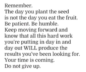the day you plant the seed is not the day you eat the fruit 🍋💭