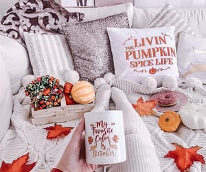 article, life, and autumn image