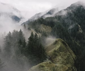 nature, explore, and fog image