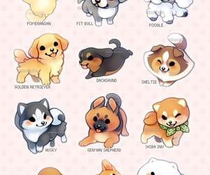 dog, dogs, and husky image