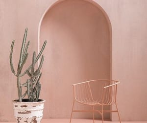 pink, cactus, and aesthetic image