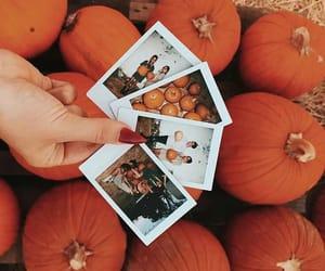 autumn, beautiful, and inspiration image