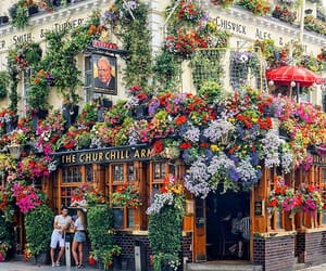 london, flowers, and beautiful image