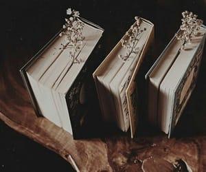 aesthetics, books, and inspiration image