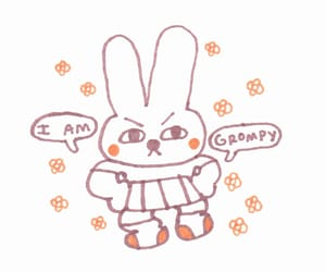 angry, bunny, and phrases image