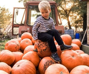 autumn, beautiful, and baby image
