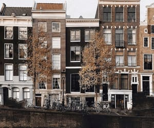 amsterdam, architecture, and autumn image