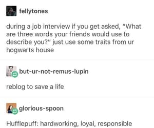 harry potter and job interview image